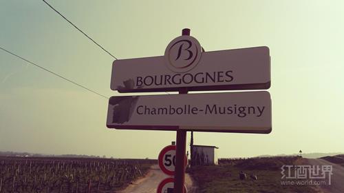 """葡萄酒业第一台""""机器人"""" 现身勃艮第名庄"""