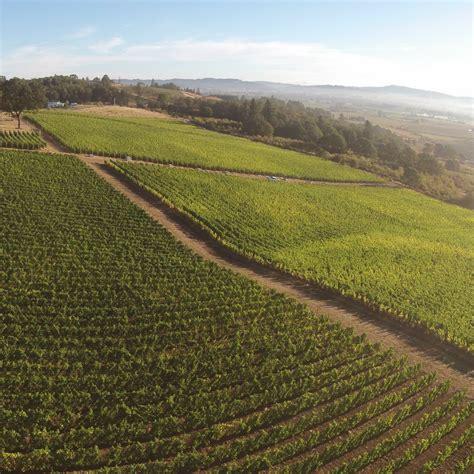 美国最佳黑皮诺葡萄酒生产商名录(上)