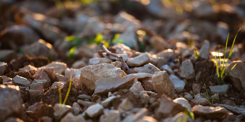 说起这些土壤,你会想到哪些产区?