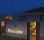 蒙特维酒庄Montevetrano