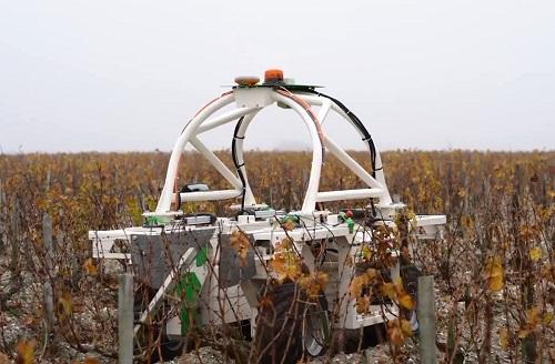 """葡萄酒行业的高科技""""员工"""""""