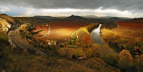 细数西班牙的5大优质葡萄酒产区