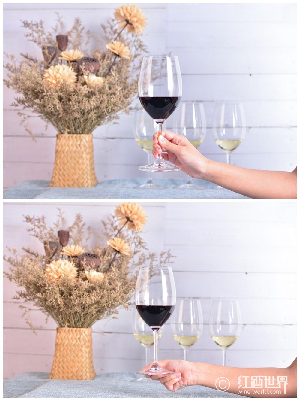 葡萄酒品鑒與實用禮儀