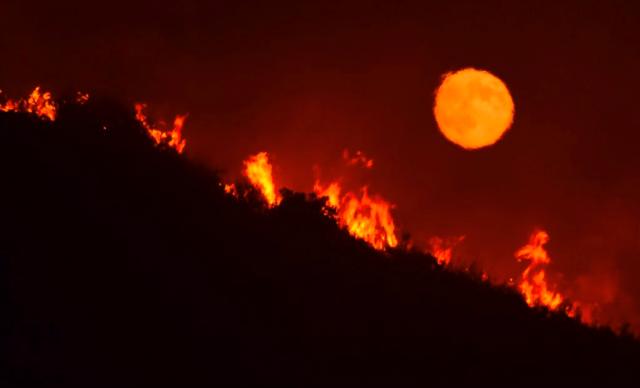 大火肆虐加州附近葡萄園