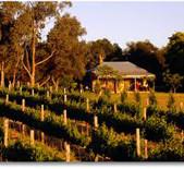 狐狸湾酒庄Fox Creek Wines